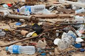 5 Ways to Win the War on Plastic Pollution